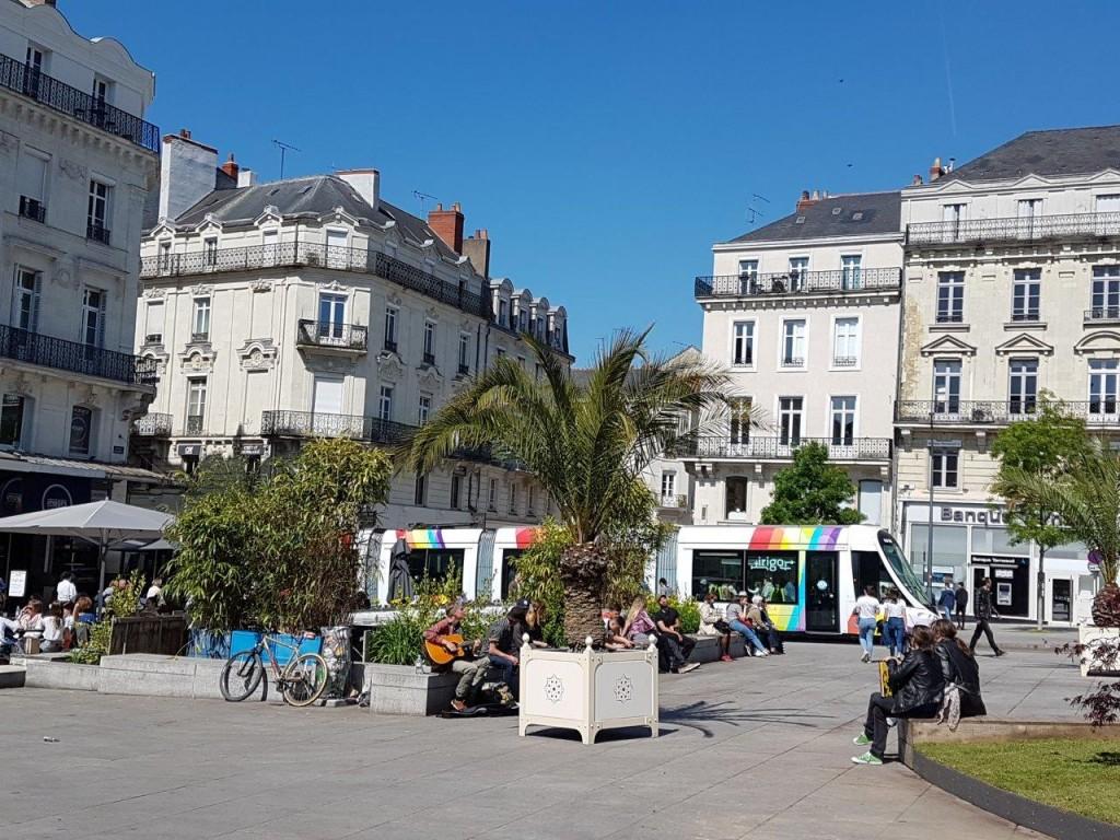 そして、中心広場の5月からのお化粧直し。椰子の木に似たプランテーションで、早くも夏のバカンスのイメージチェンジ。解放感が増す。